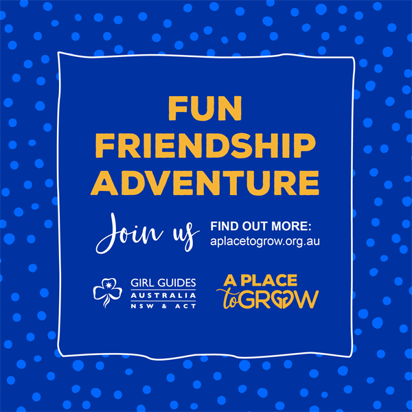 Fun Friendship Adventure